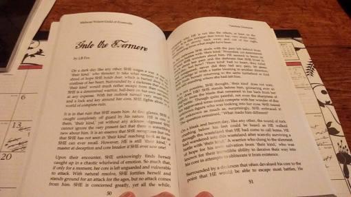 tt-book2